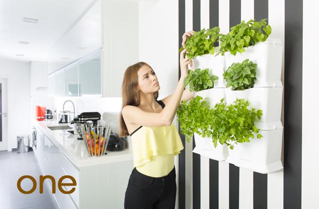 Vertikale Gärten und Anbausysteme